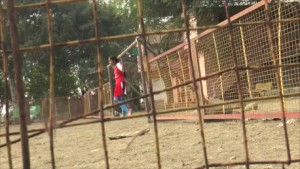 SS Goal Keeper through fence_458