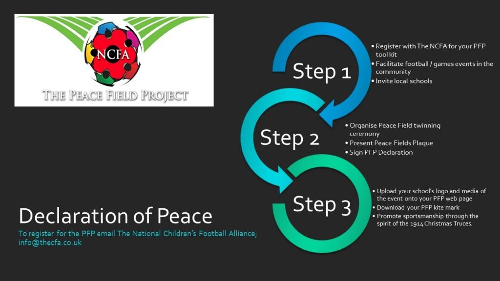PFP 3 STEPS